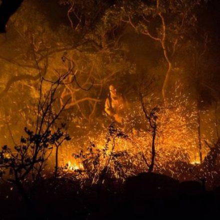 ICMBio: incêndio que já atinge 22% da Chapada dos Veadeiros foi criminoso
