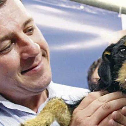 Castração é retomada em São Bernardo e promete zerar fila de 1.500 animais até janeiro