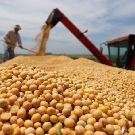 Exportação de soja em novembro bate recorde