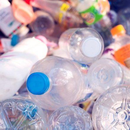 """Cientistas desenvolvem """"por acaso"""" enzima capaz de devorar garrafas PET"""
