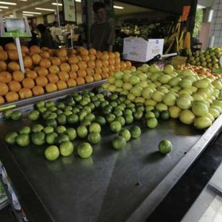 Alimentos desaparecem das prateleiras dos supermercados