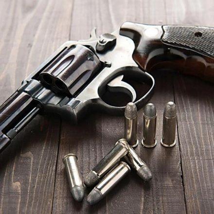 Registro de armas de fogo na Polícia Federal quintuplica em dez anos