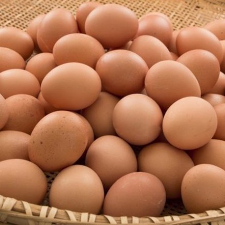 Carrefour tem meta de vender apenas ovos de 'galinhas felizes'