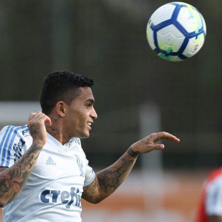 Palmeiras evita pensar no Boca Juniors para não perder foco no Brasileirão