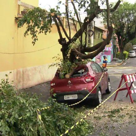 SP registra reflexos do temporal que atingiu a cidade