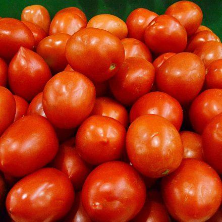 Combustíveis e tomate pressionam a inflação neste mês