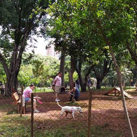 Parques para cachorros têm problemas de conservação