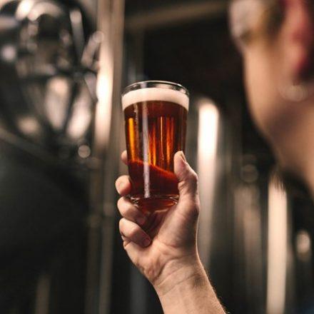 Consumo de cerveja cresce e atinge mais meio milhão de famílias brasileiras