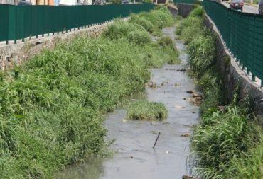 Córregos estão com acúmulo de entulho e têm mau cheiro