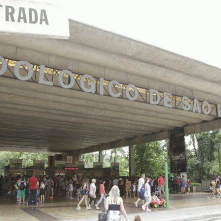 Doria anuncia privatização de Zoológico e Jardim Botânico