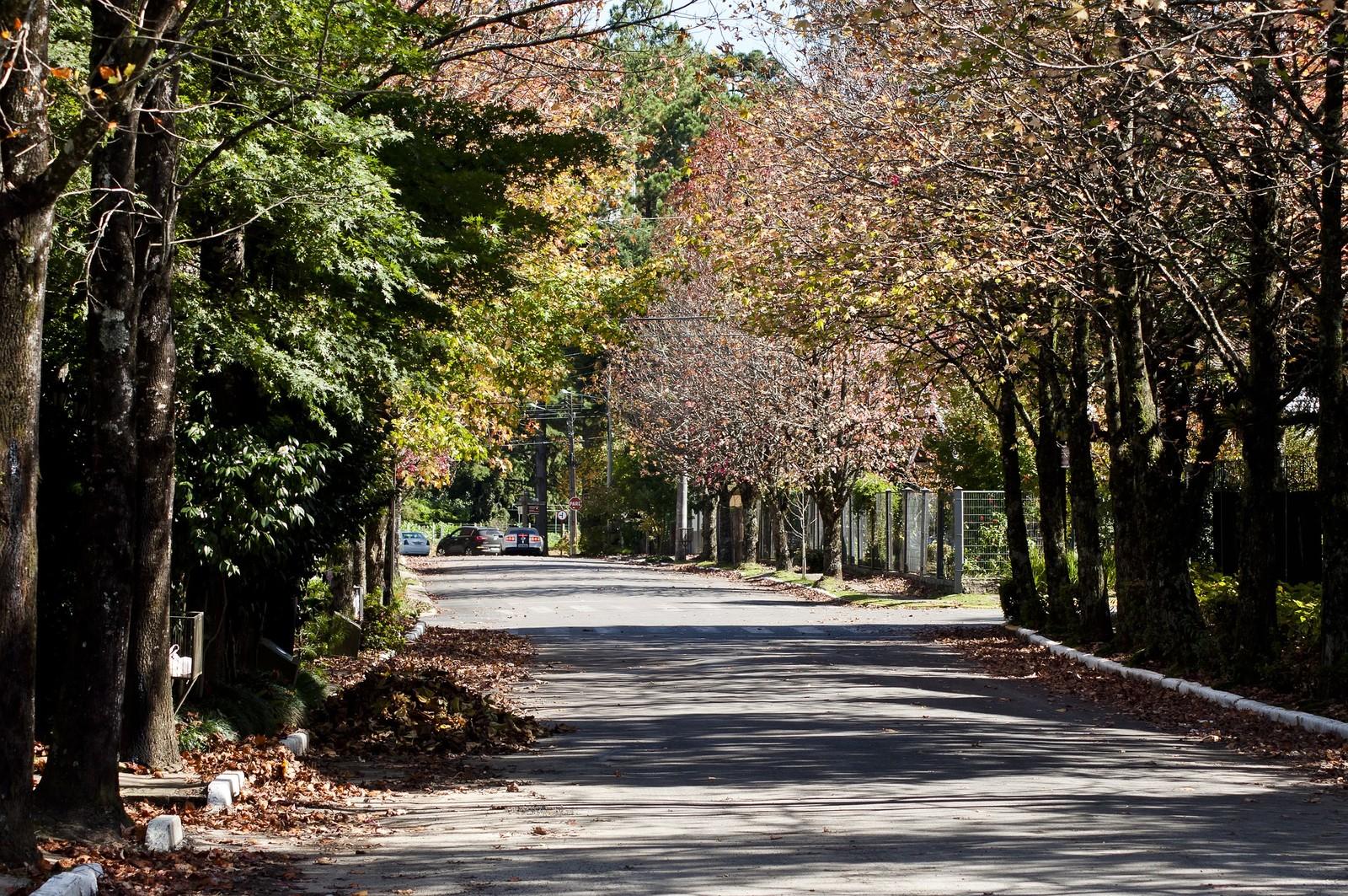 Outono começa nesta quarta-feira