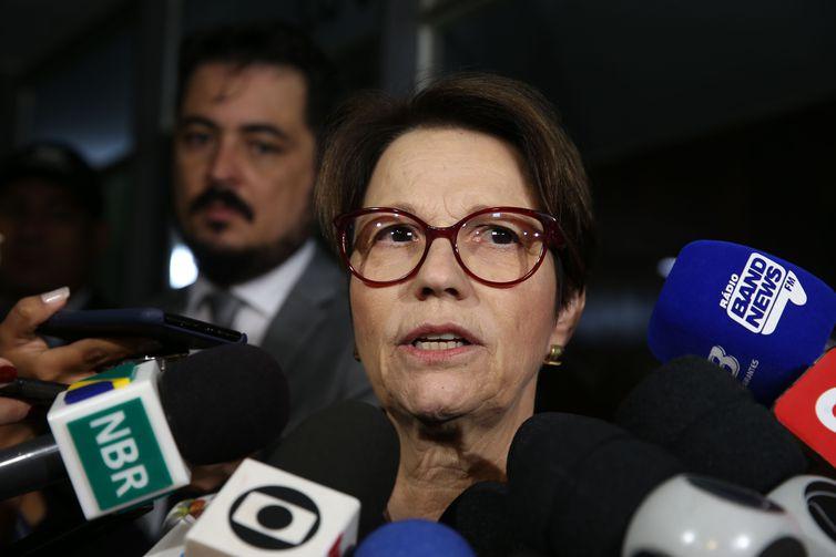 Ministra Teresa Cristina quer aumentar parcerias com países árabes