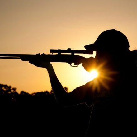 Pesquisa aponta que 93% são contra liberação de caça, diz Ibope