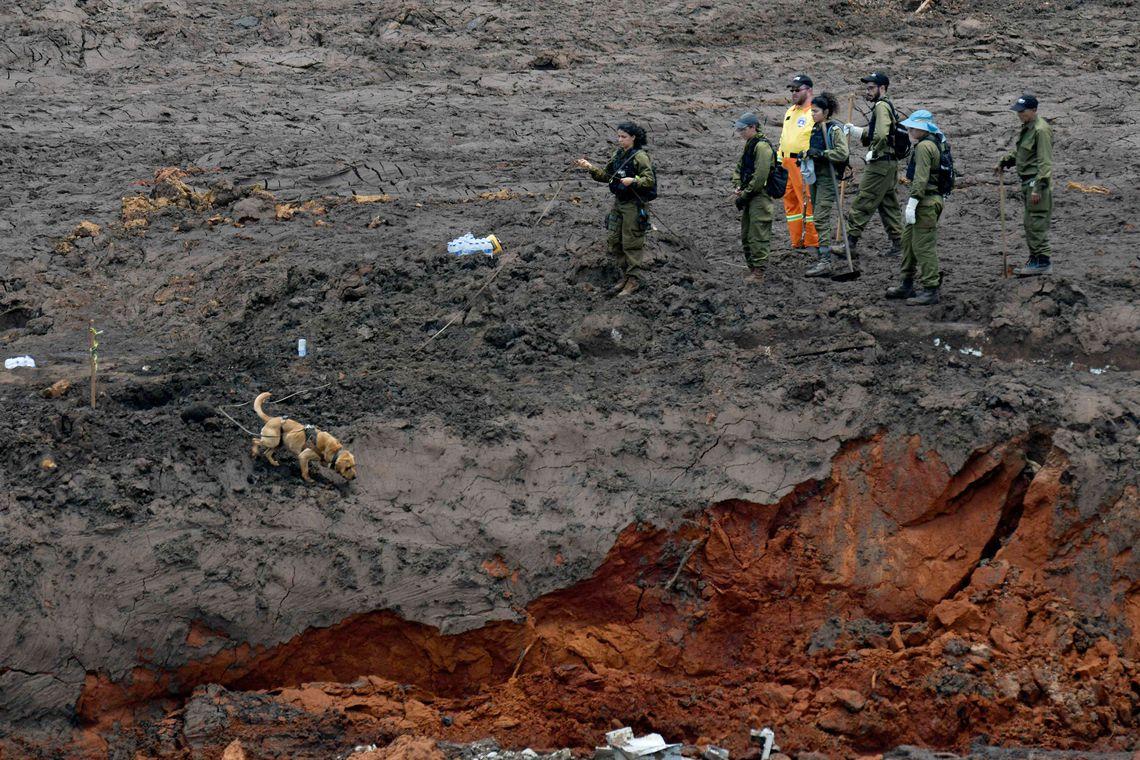 Bombeiros encontram mais um corpo de vítima de tragédia em Brumadinho