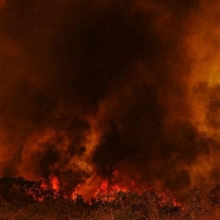 Força Nacional vai combater incêndios no Pantanal
