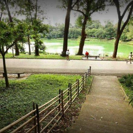 Prefeitura de São Paulo suspende zeladoria de parques temporariamente