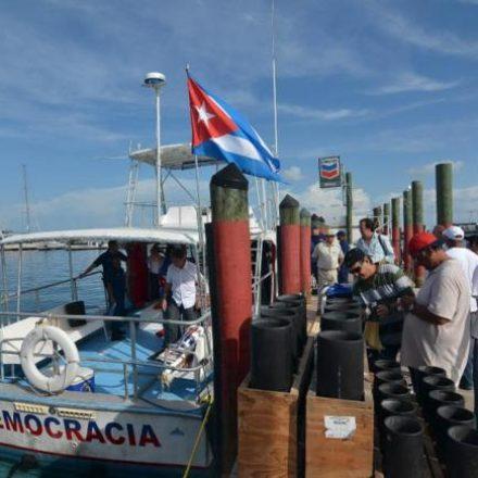 Dobram pedidos de refúgio de cubanos após programa