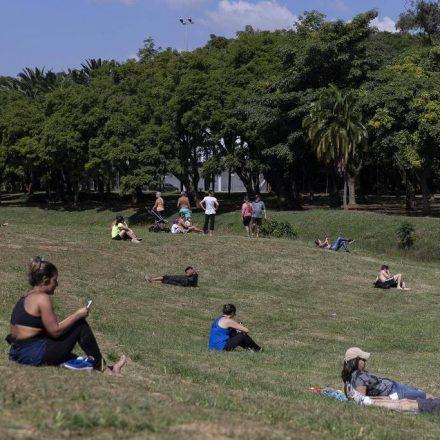 Prefeitura de São Paulo estuda reabertura de parques municipais